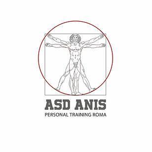New logo Anis.jpg
