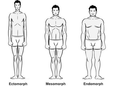 Allenamento e Somatotipi: l'ECTOMORFO