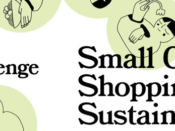 Small Changes: Shopping Sustainably