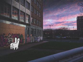Student Spotlight | #01 | Daria Kowalczyk