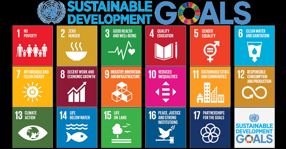 A table displaying the United Nations Sustainable Development Goals.