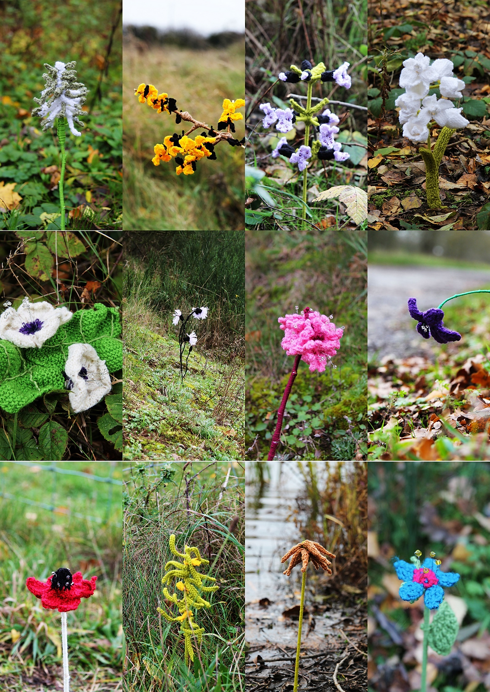 The image features knitted flowers created by Lucy cross as part of a university project which focused on conservation.