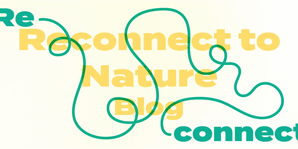 Reconnect to: Nature