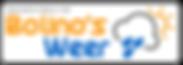 Logo-Bolino's weer-KLEIN.png