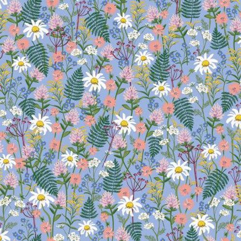 Wildflowers - Periwinkle