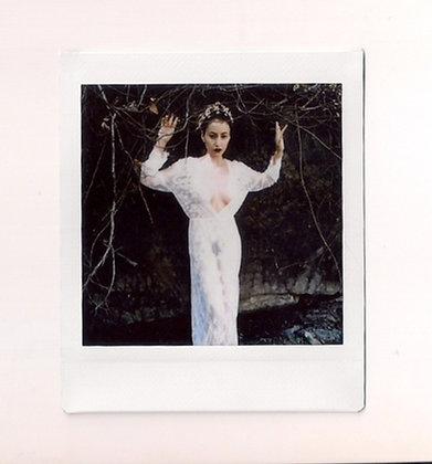 Spirit of the Creek Polaroid