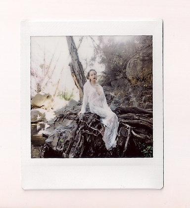 Throne of the Creek Polaroid