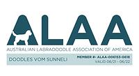 Doodles vom Sunneli ALAA LOGO 2021.png