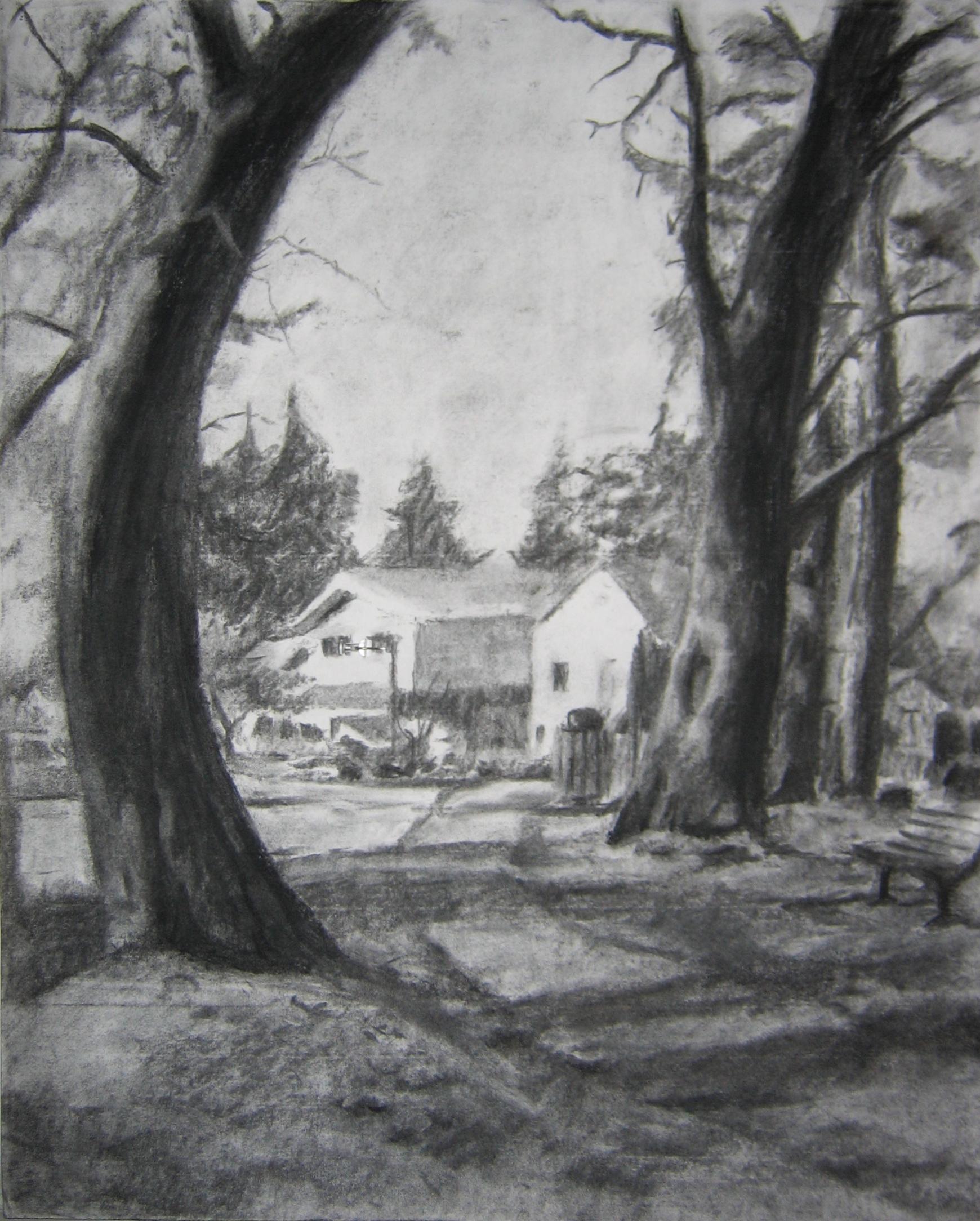 Shoreline Center Park Charcoal Study