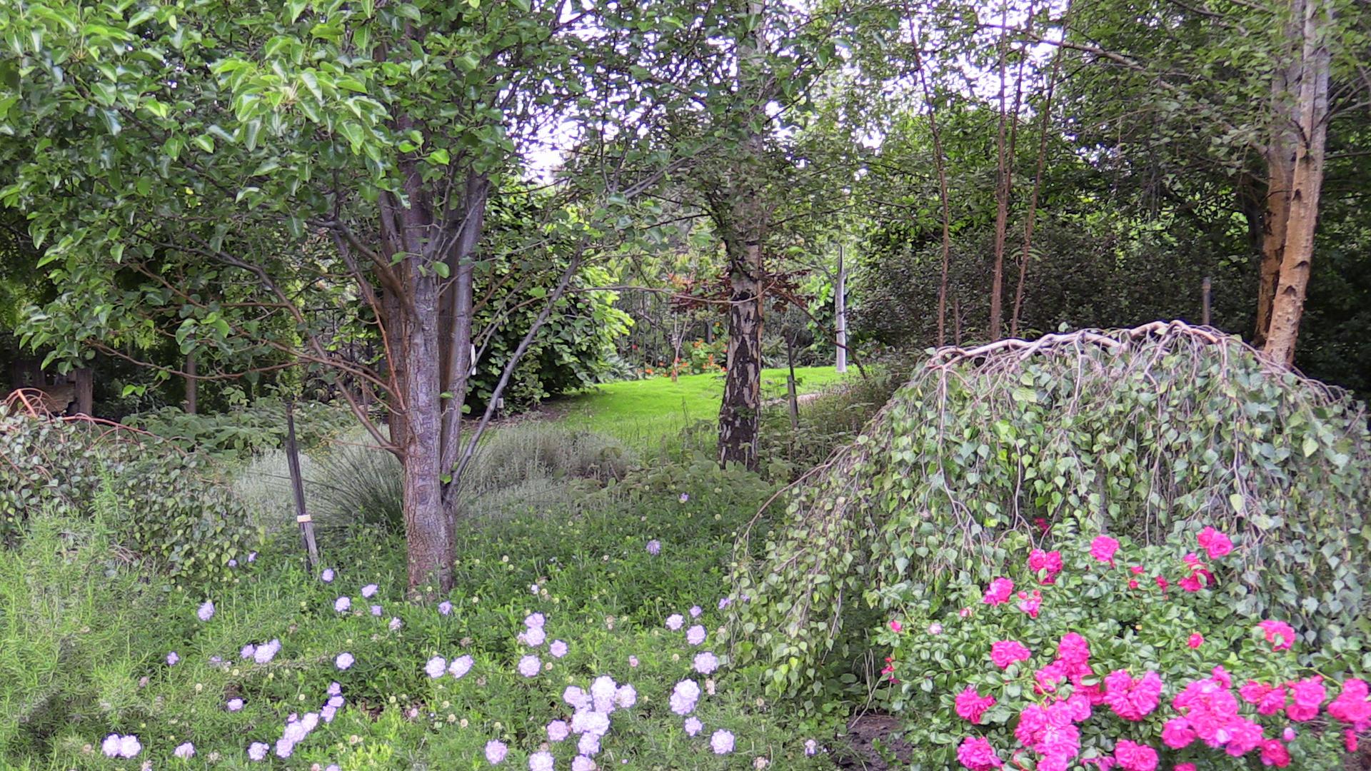 Drive garden left
