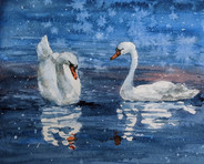 Snowy Swan Lake