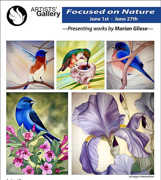 Marian- Focused on Nature 8.5x11.jpg