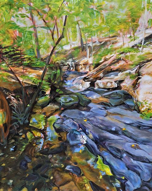 Maidman-Tanner - Wheaton Regional Park, Boulder Study #3
