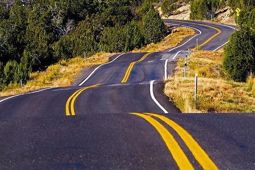 Stier - Road to Zion