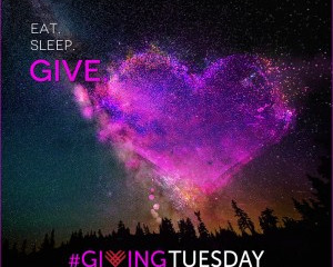 Giving Tuesday - 3 Quick Ways You Can Give Back AND Set a World Record