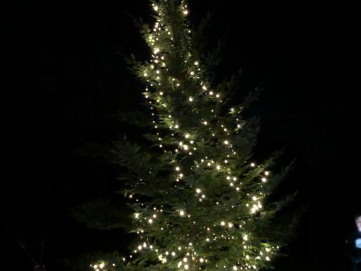 Carols around the Christmas tree on the green