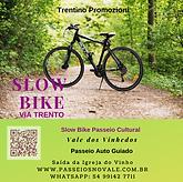 Slow Bike.png