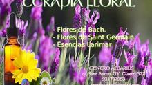 Como trabajan las Esencias Florales