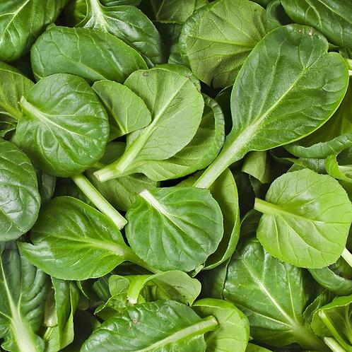 Organic  Baby Spinach -Fresh