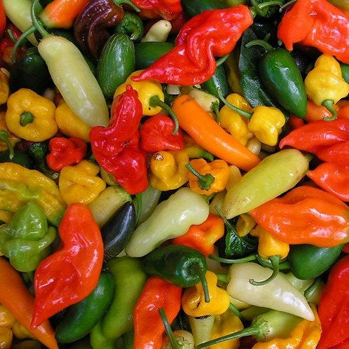 Farmer's Choice Mixed Hot Peppers - price per lb.