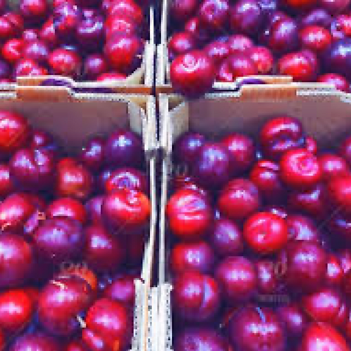 Red Plums, Organic - 1 lb
