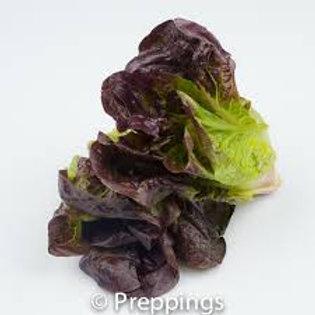 Lettuce, Baby Red Gem - each