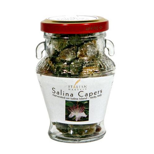 Sicilian Capers, Large in Jar