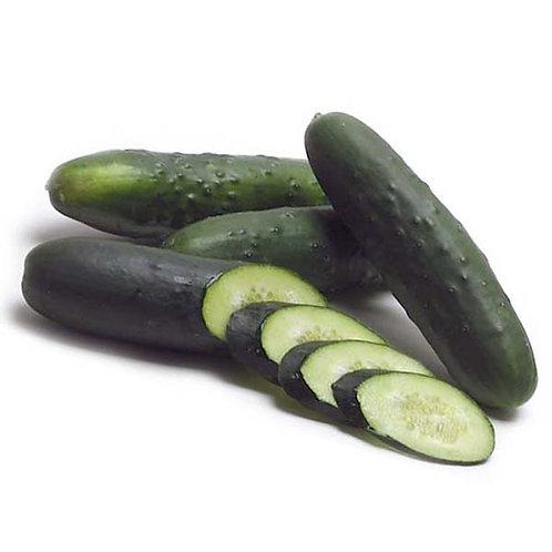 Cucumber, Organic - 1 lb