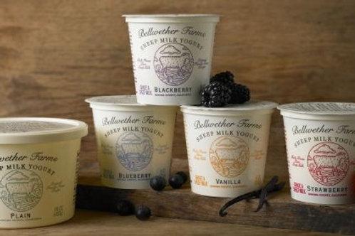 Bellwether Sheep Yogurt - Strawberry 6 oz