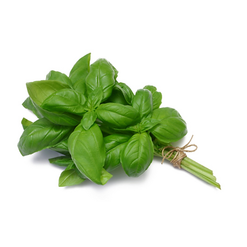Basil, bunch
