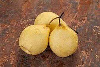 Yali Pears - price per pound