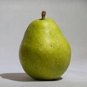 Anjou Pear - 1 lb