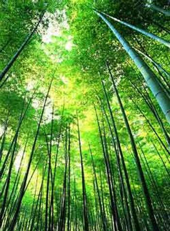 Бамбуковые салфетки