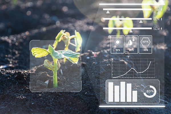 Smart farm technology for detection and control system of Plant sprout growing design info