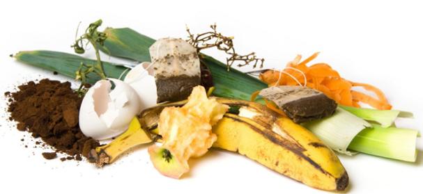 Food-waste.png