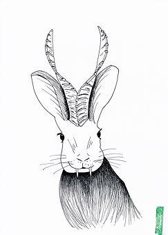 Wolpertinger3_AnneBlaich_Zeichnung_Ausmalbild.jpg