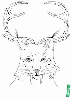 Wolpertinger5_AnneBlaich_Zeichnung_Ausmalbild.jpg