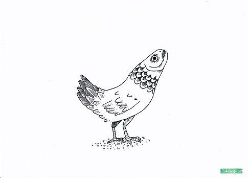 Wolper-Fisch_AnneBlaich_Zeichnung.jpg
