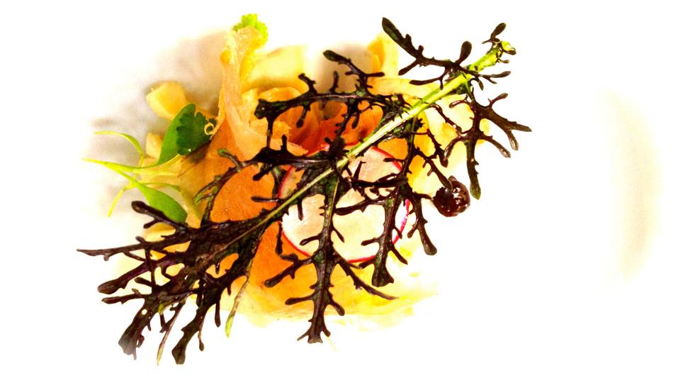 Kingfish Pastirma 2012