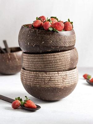 Jungle Culture Coconut Bowl - Cosmos Design