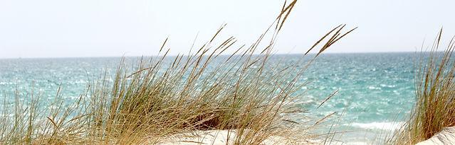 beach_B_edited.jpg