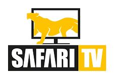 SafariTV-Logo.png