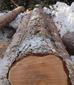 Nos gusta la madera