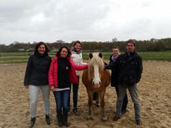 Teamcoaching met behulp van paarden