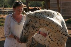 paardencoaching workation ibiza 2021