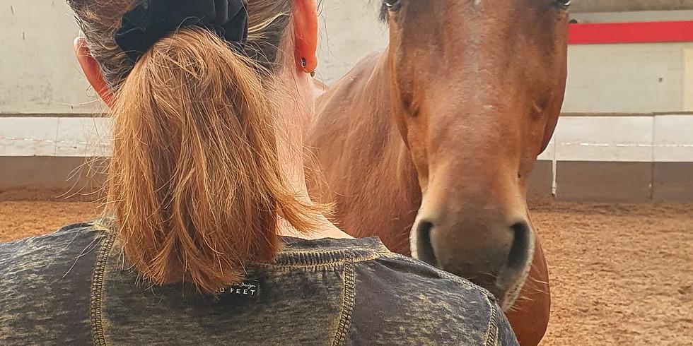 Ontmoet jezelf d.m.v. paardencoaching 14/12