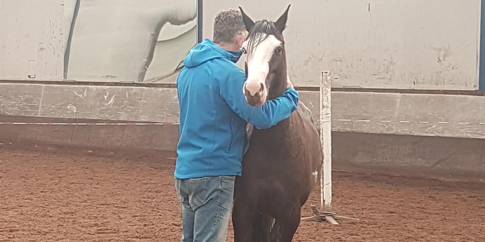 Ontmoet jezelf door de ogen van het paard