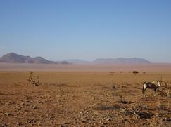 Namibia proper