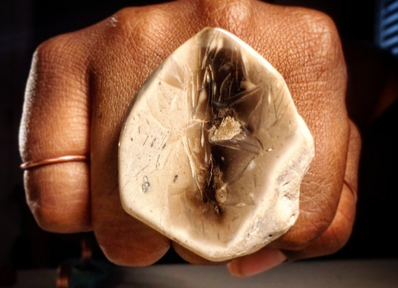 Powerful Petrified Wood Adjustable Ring