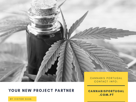 Canabis Portugal I Projetos canabis medicinal em Portugal I Canábis para fins medicinais